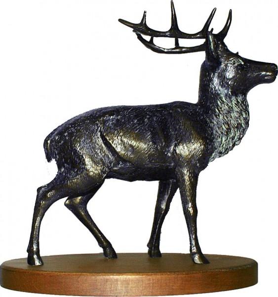 MOLL Hirsch 73316