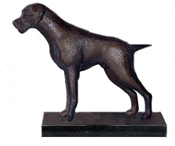 MOLL Hund Deutsch Drahthaar 73312