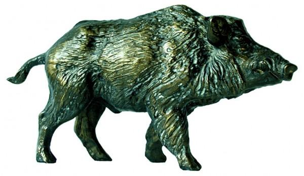 MOLL Wildschwein 60557
