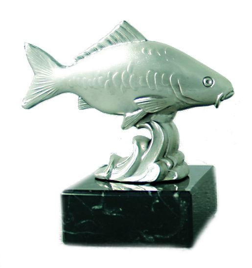 MOLL Fisch Karpfen 40293